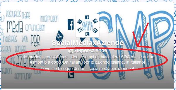 Social media per aziende - Twitter Profile Bio