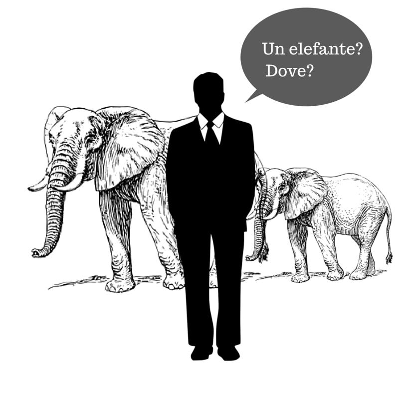 politica - elefante