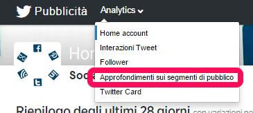twitter-segmenti-pubblico